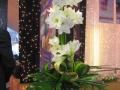 virág dekoráció 24 by partydekor.hu